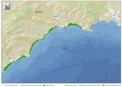 cartografia35